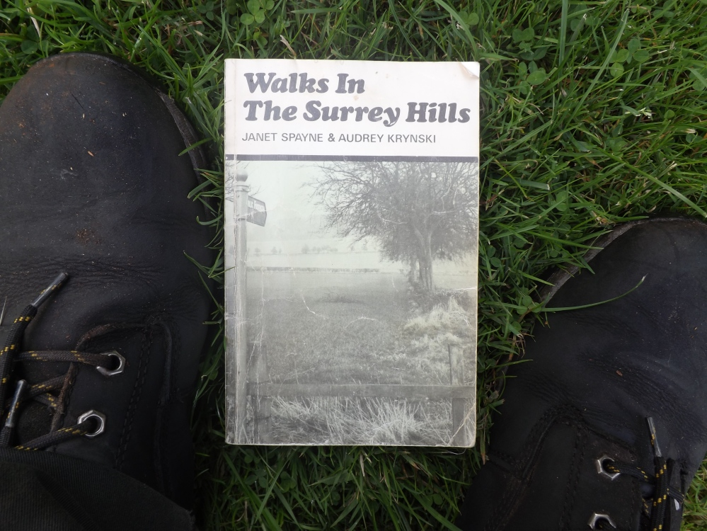 walks in the surrey hills (3)